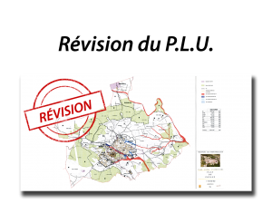 cadre revision