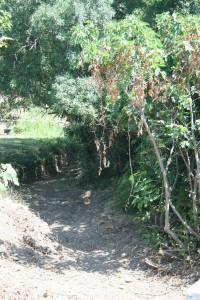 nettoyage cours d'eau